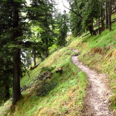 bergsteig-bayrischzeller-hoehenweg